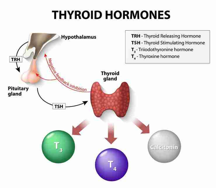 Thyroid and mental illness